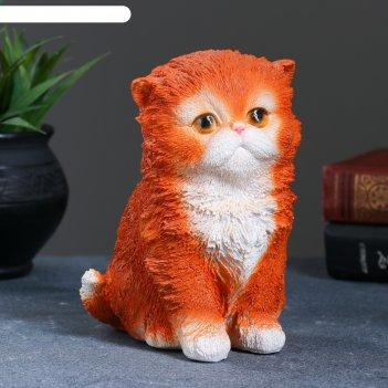 Фигура котенок персидский  рыжий 14х11х15см