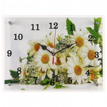 Часы настенные, серия: цветы, ромашки, 30х40  см, микс