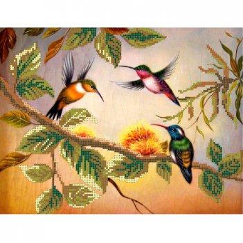 Рисунок для вышивания бисером колибри