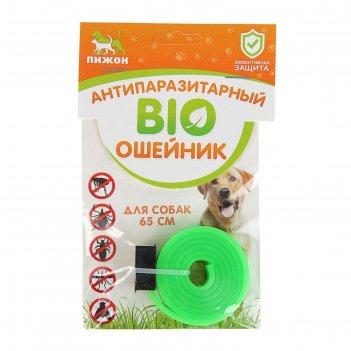 Биоошейник антипаразитарный пижон для собак от блох и клещей, зелёный, 65