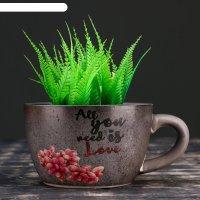 Кашпо в форме чашки любовь 16*5*10см