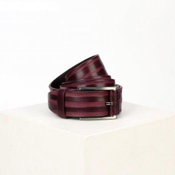 Ремень мужской, ширина 3,5 см, винт, пряжка металл, цвет бордовый