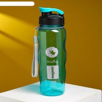 Бутылка для воды роден 550 мл, микс