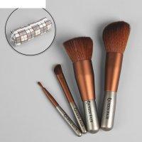 Набор кистей для макияжа, 5 предметов, в футляре, цвет коричневый