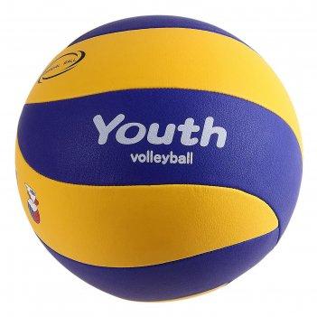 Мяч волейбольный mikasa yv-3, р.5, сине-желтый