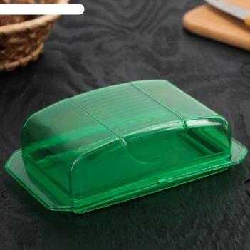 Масленка 17х11х5 см