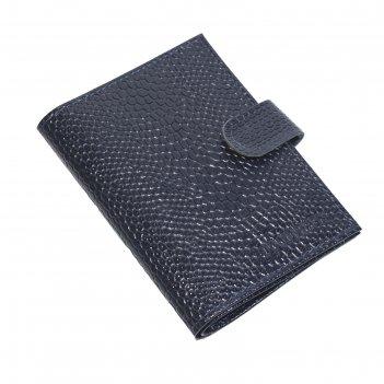 Обложка вп1022 для автодокументов+паспорт/купюрник, синий, змея