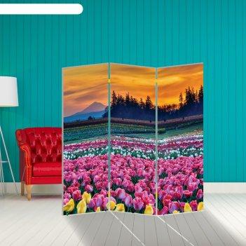 Ширма тюльпаны. декор 7 150 x 160 см