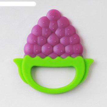 Прорезыватель силикон виноград