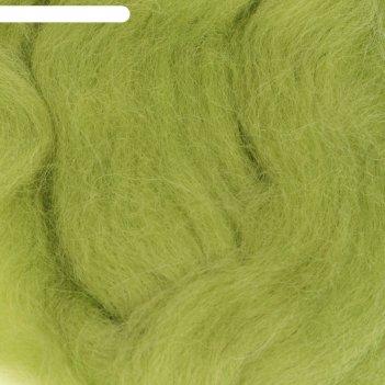 Шерсть для валяния 100% полутонкая шерсть 50гр (119 горох)