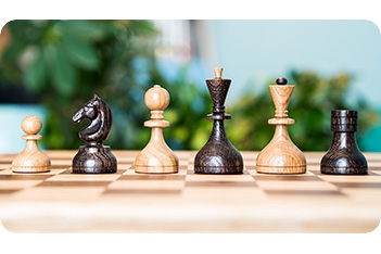 Шахматные фигуры стародворянские бук