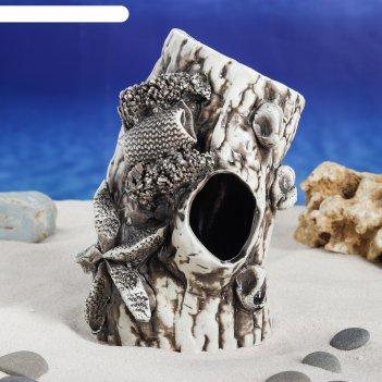 Аквадекор-грот для аквариума полено среднее 11х11х19 см
