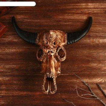 Панно череп буйвола 66х54 см, дерево аолбезия