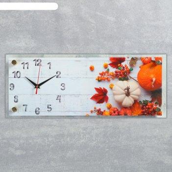 Часы настенные, серия кухня, овощной микс, плавный ход, 49.5х19.5 см