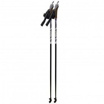 Палки для скандинавской ходьбы atemi atp-02, стекловолокно, 115 см