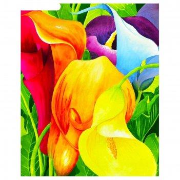 Картина со стразами разноцветные каллы ckc036