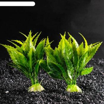 Набор растений искусственных для аквариума (2 шт), 11,5 см