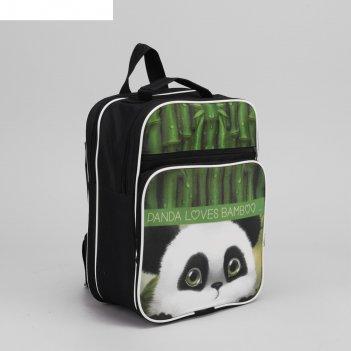 Рюкзак школьный панда, 2 отдела на молнии, 2 наружных кармана