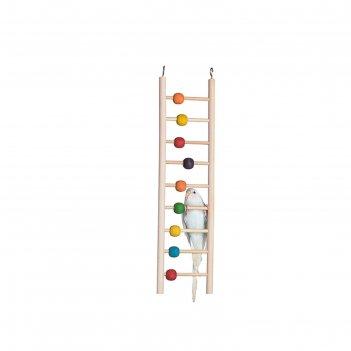 Игрушка для птиц лестница с бусинками 9 ступеней, 3.5 x 21 x 24 см