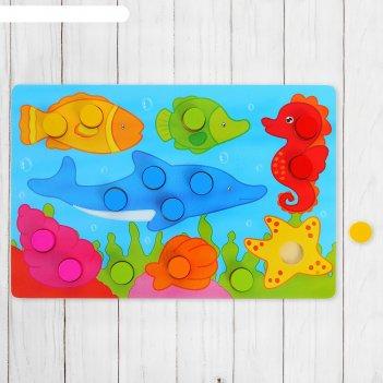 Рамка - вкладыш подбери цвета подводное царство, 15 элементов