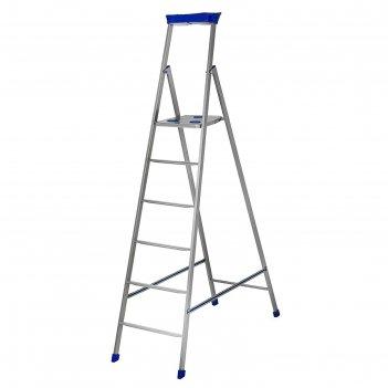 Стремянка металлическая, 6 ступеней, высота до платформы 128,5 см