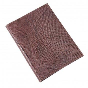 Обложка для автодокументов, размер 9,5 х 13 см, цвет коричневый тёмный игу