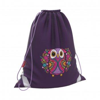 Мешок для обуви, 440 х 365 мм, erich krause, flower owl, увеличенные габар