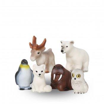 Набор «животные арктики и антарктики»