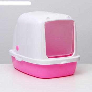 Туалет закрытый «айша», 53 x 39 x 40 см, розовый