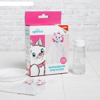 Выращивание кристаллов disney кошка мари  кфд-005