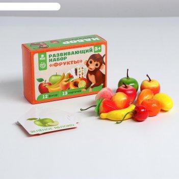 Развивающий набор фрукты 15х10х5 см