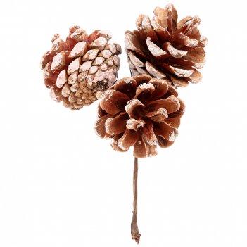 Изделие декоративное шишки длина=12 см. (мал=12 шт/кор=480шт.)