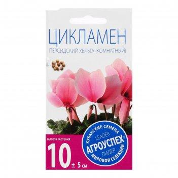 Семена комнатных цветов цикламен хельга 3шт
