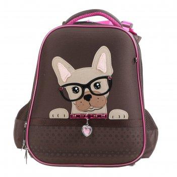 Рюкзак каркасный hatber ergonomic classic 37 х 29 х 17, для девочки my pet