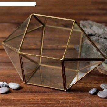 Флорариум сундук золотой каркас