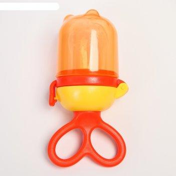 Изделие для прикорма с силиконовой сеточкой, цвет оранжевый