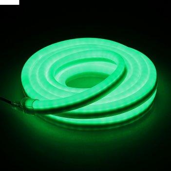 Гибкий неон, 12*24мм, 5 м, led/м-80-220v, зеленый