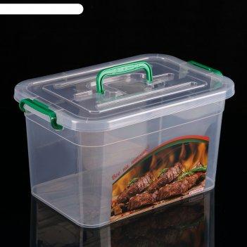 Контейнер пищевой 10 л все на пикник, цвет микс