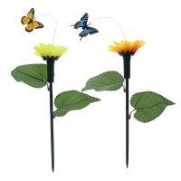 Летающая бабочка во круг цветка, цвета микс