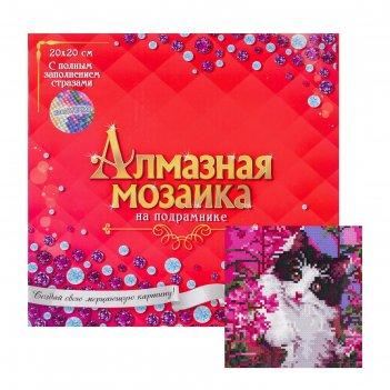 Алмазная мозаика с полным заполнением 20х7 любопытный котик ac20057