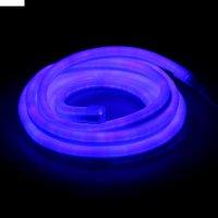Гибкий неон, 12*24мм, 5 м, led/м-80-220v, синий