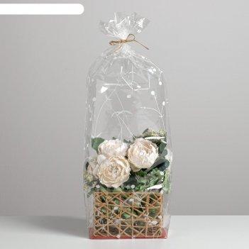 Пакет с жёстким дном «ботаника», 11 х 17 х 60 см
