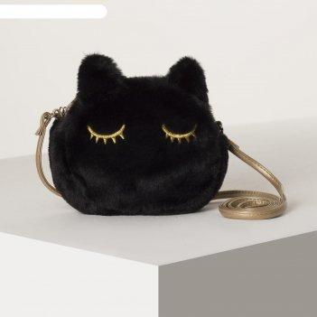 Сумка детская, отдел на молнии, «чёрная кошка»