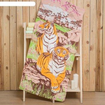 Полотенце collorista тигры 70х140 см, 260 гр/м2, 100% хлопок