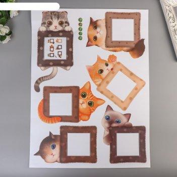 Наклейка на выключатель котики набор 6 шт 45х60 см