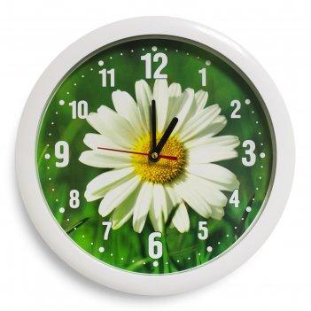 Часы настенные ромашка, белый обод, 28х28 см, микс