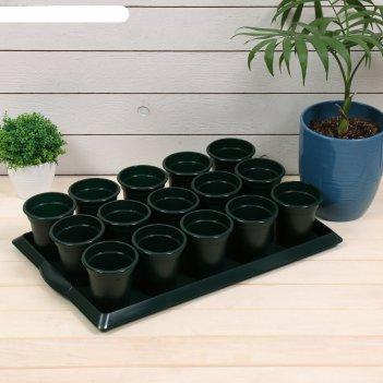 Набор для рассады: стаканы по 300 мл (15 шт.), поддон 47 x 30 см, микс