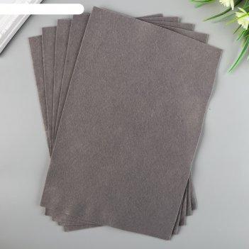 Фетр   blitz   декоративный   20х30 см ± 2 см  (набор 5 шт) серый