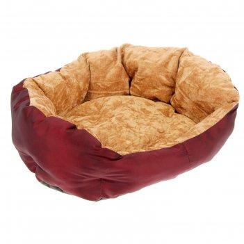 Лежанка для животных комфорт 49 х 36 х 17 см, тафта, микс цветов