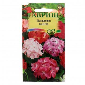 Семена комнатных цветов пеларгония капри f2 зональная, мн, 4 шт